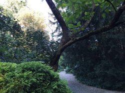 Giardino Sanvitale Fontanellato